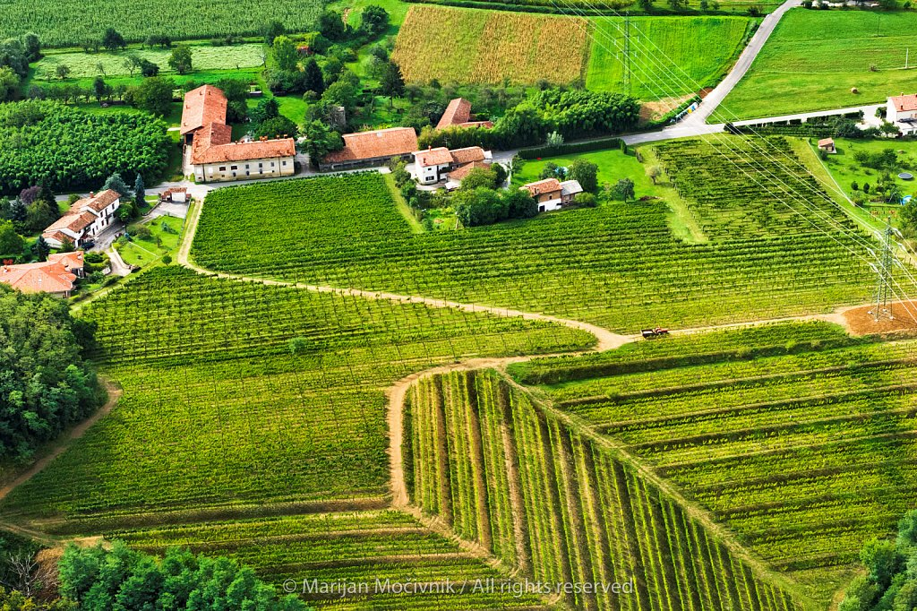 Bukovica, Vipava Valley, Slovenia