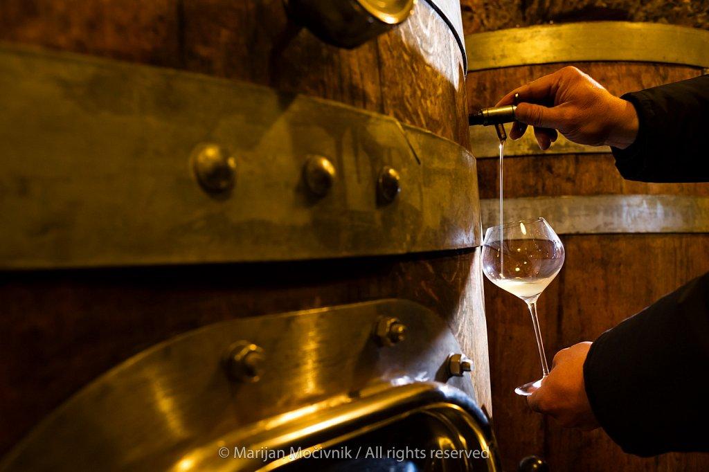 Zidarich Winery, Carso, Italy