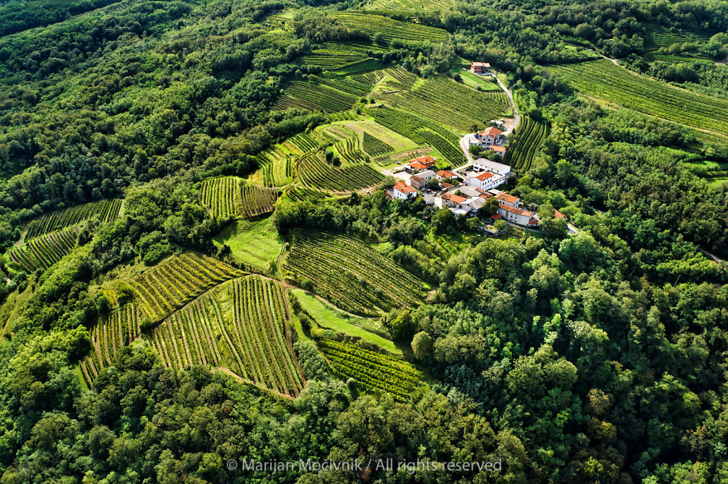 Mansus (Makovec) Winery, Brje, Vipava Valley, Slovenia