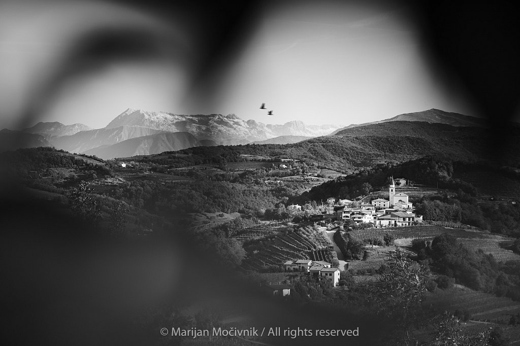 Brda-ptice-Alpe-v-ozadju-2935-2048.jpg