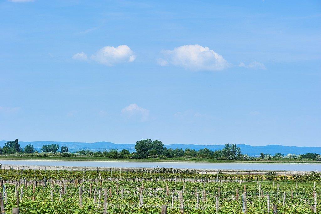Burgenland-Illmitz-2301-2048.jpg