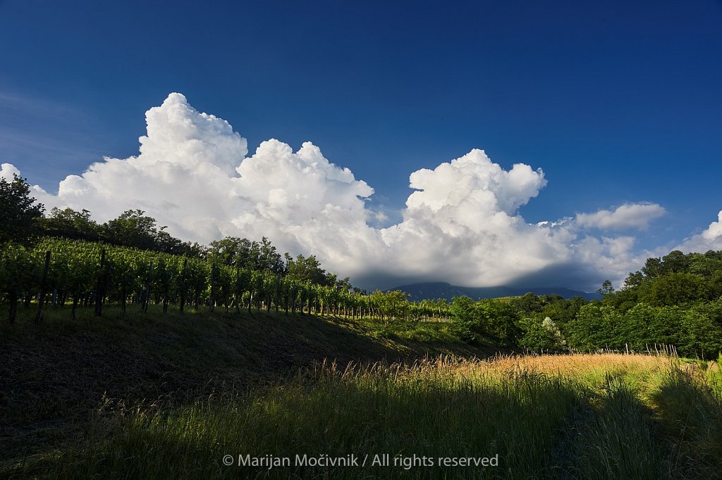 Vinograd-oblaki-blizu-Zalosce-5236-2048.jpg