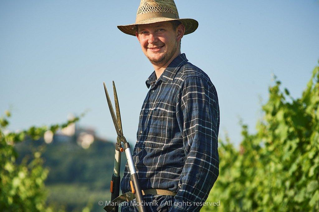 Jure-Simcic-vinograd-Kozana-8714-2048.jpg