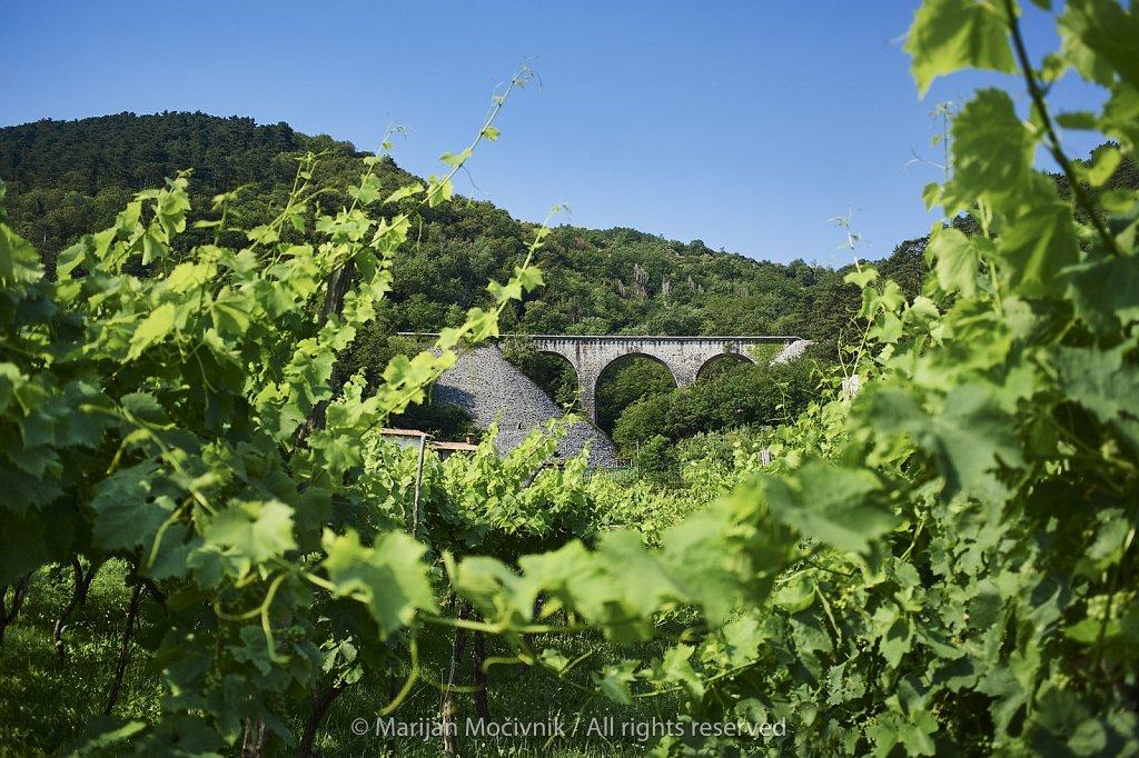 Branik-Cvetroz-zelezniski-most-3244-20498.jpg
